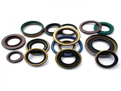 Clipper Oil Seal